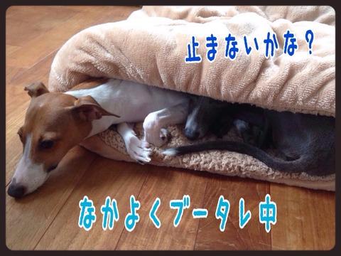 2015-09-01-19-16-36