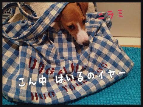 2014-09-20-00-00-34