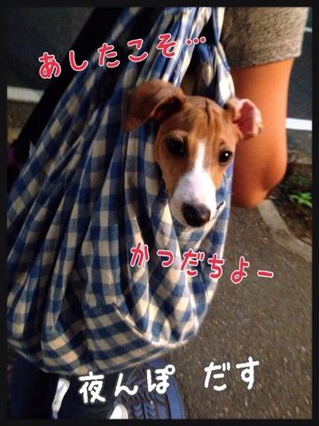 2014-09-20-00-42-01