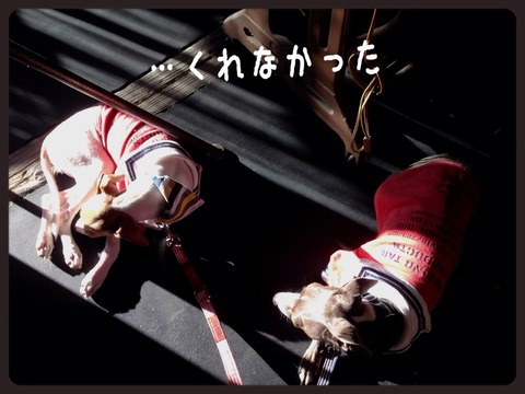 2014-10-04-00-53-53