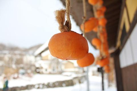 福島みしらず柿