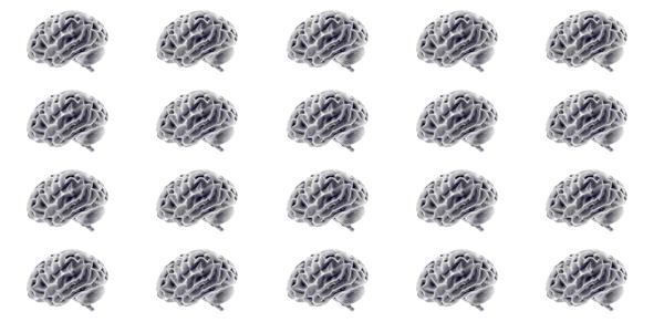 天然ニューラルネットワーククラスタ