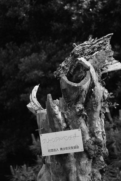 2014_05_31_03.jpg