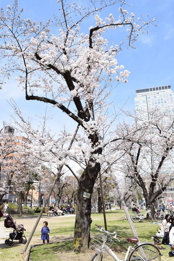 2014_03_29_14.jpg