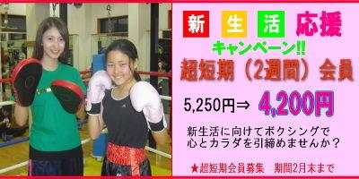 image201302marugoto