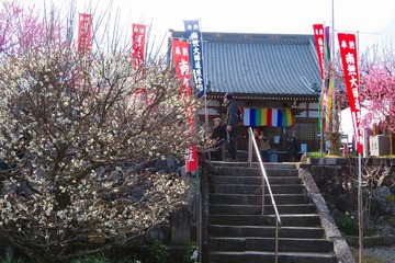 tukigase20200303-03