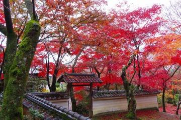syojiji20191202-05