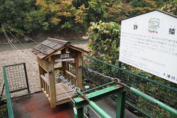 totugawa20171108-1
