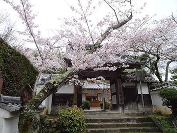 syojiji20170409-01