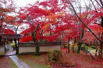 syojiji20191202-04