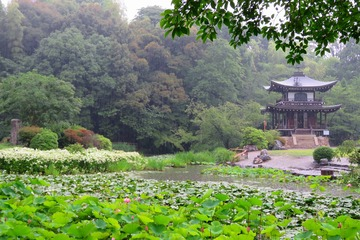 kajuji20200630-06