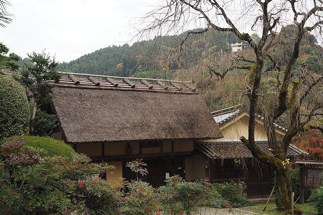 谷瀬の吊り橋と賀名生皇居跡 (11...