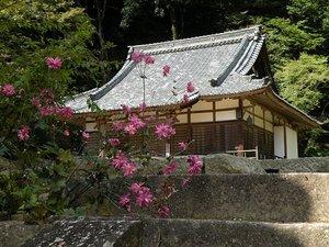 Shoryakuji01