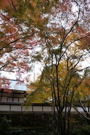 02shiryakuji_2
