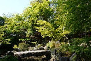 Nagaokatenjin1509