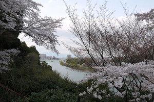 Ishiyamadera06