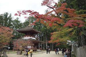 Kouyasan2016102911