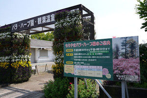 Moriyama01