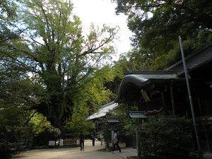 23katsuragi