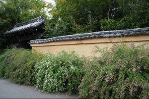 Koshoji201509272