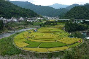 Aragishima01
