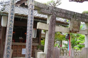 kudoyama20190428-12