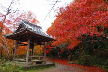syojiji20191202-08