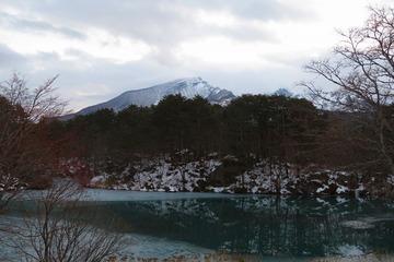 14bisyamonnuma20200214