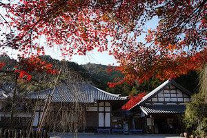 Kashiwabara05