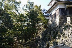 07matsuyama