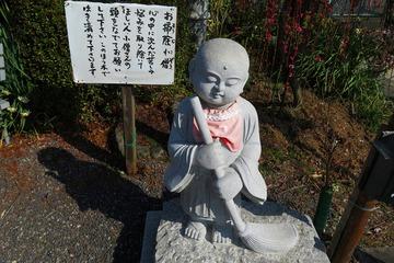 tsukigase20190305-04