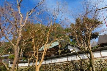 syoryakuji20200309-01