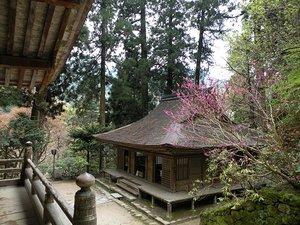 Murouji04