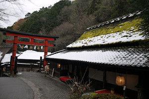 Toriimoto02