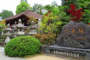 kudoyama20190428-02