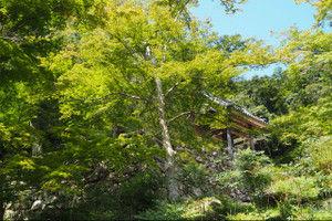 Shoryakuji201509201