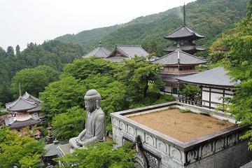 tsubosaka20170705-3