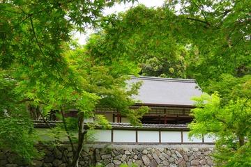 syoryakuji20190520-03