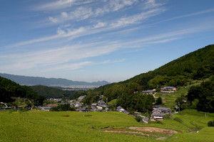 713hosokawa