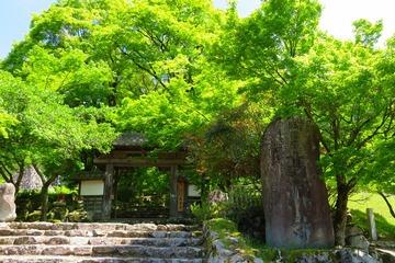 kogenji20190508-01