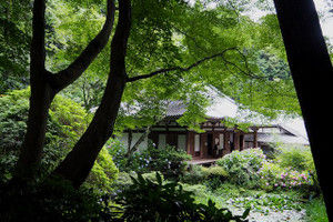 Gansenji201606254