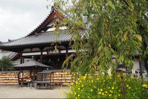 Abemonju201510121