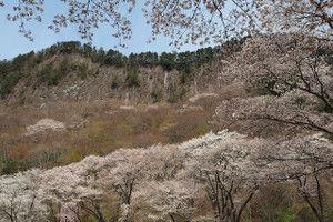 Byobuiwa_park2016041607