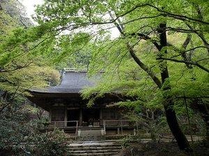 Murouji05