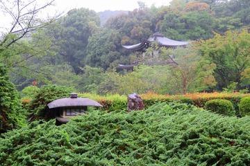 kajuji20200630-03