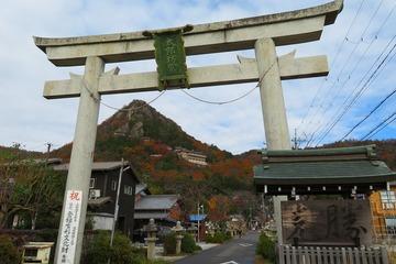 tarobogu20191208-01