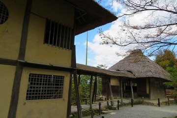 kodaiji20200324-06