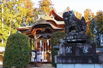 umamiwatamuki20190114-02