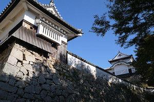03matsuyama