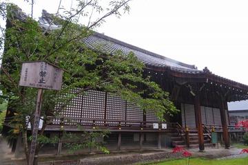 kajuji20200630-02